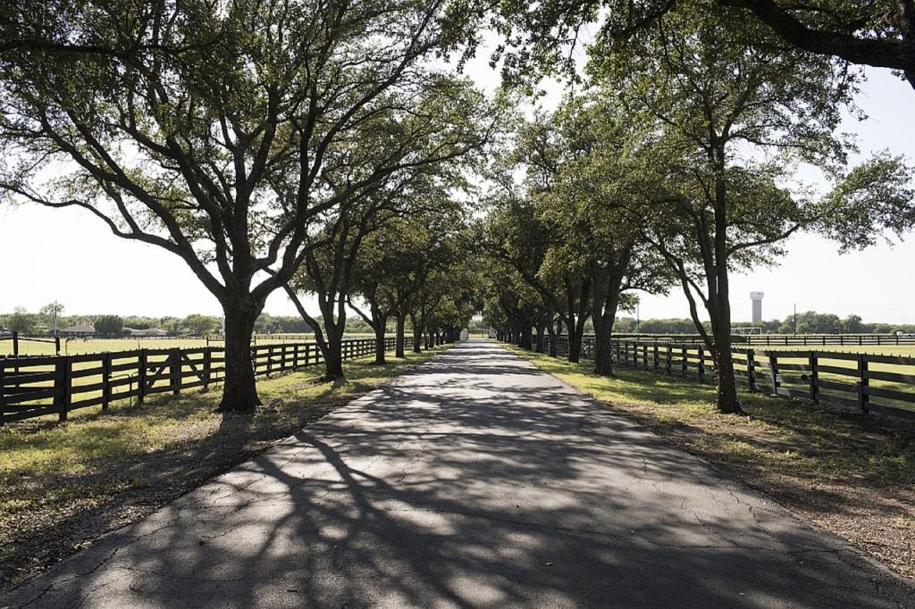 southfork-ranch-739232_1280